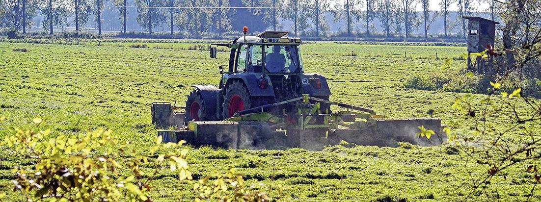 Große Maschinen prägen das Bild heutiger Landwirtschaft. Foto: Pixabay