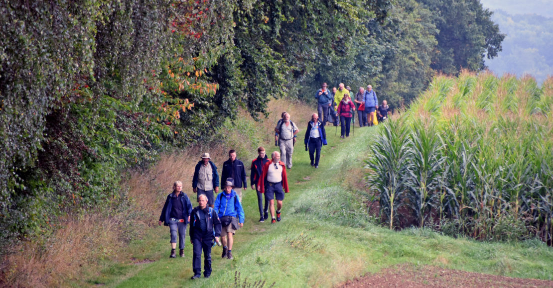 Der Ökumenische Pilgerweg von Polen nach Schottland führte durch das Brakeler Land. (Fotos: Patrick Kleibold)